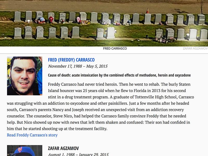 A screenshot of the opioid graveyard interactive